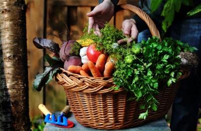 Korb mit frischen Lebensmitteln