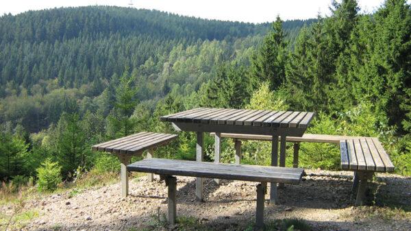 Tisch mit zwei Sitzbänken, Wald im Hintergrund