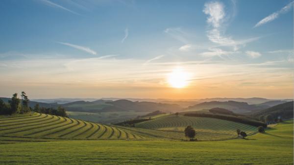 Hügelige Landschaft im Sonnenschein
