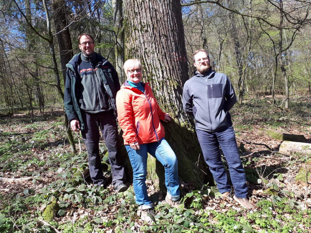 Drei Menschen stehen vor einem Baum